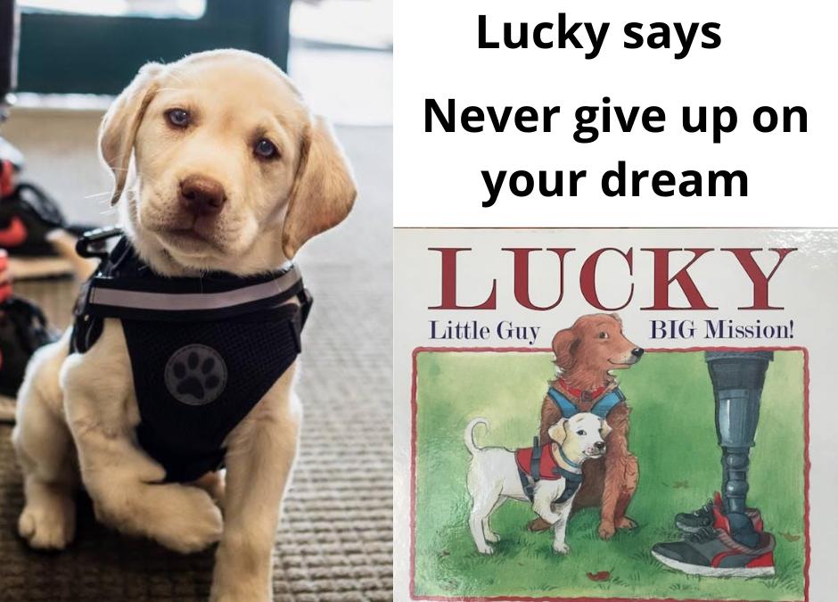 Lucky says…