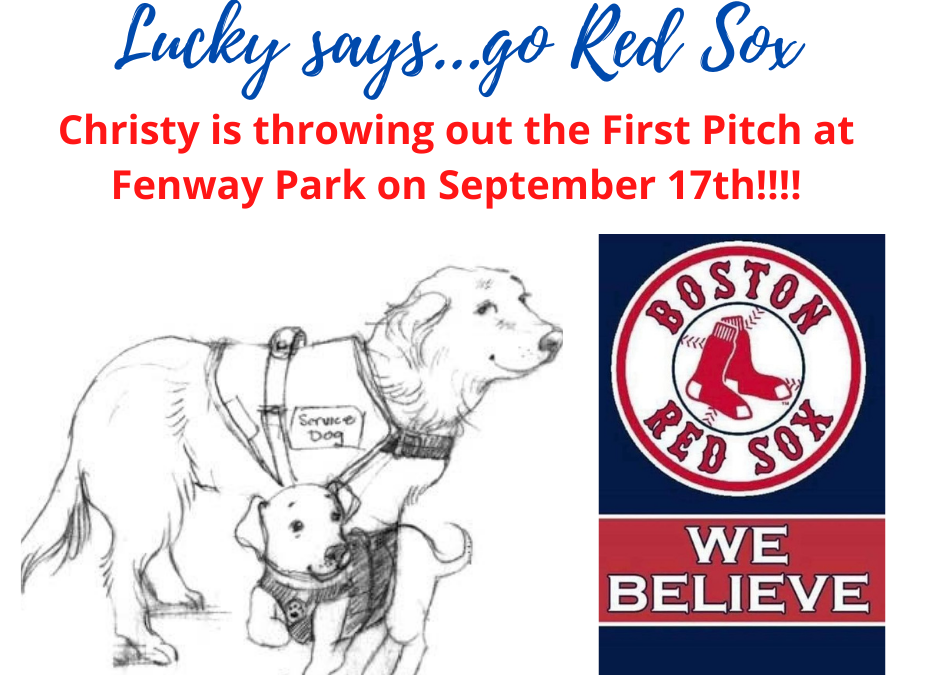 Exciting News…go Red Sox!